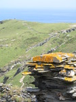 SX07270 Stones of medieval courtyard of Tintagel castle - view towards Barras Nose.jpg